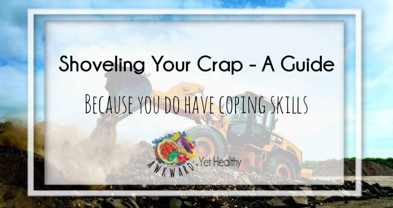 Shoveling Your Crap- A Guide