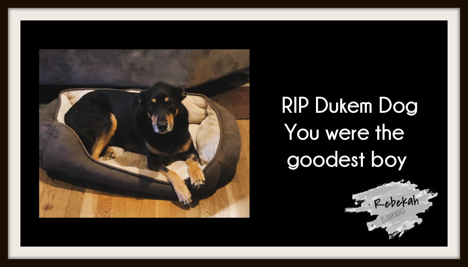Our Dukem Dog